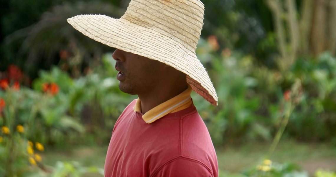 Agricultural consultant working on a farm 1